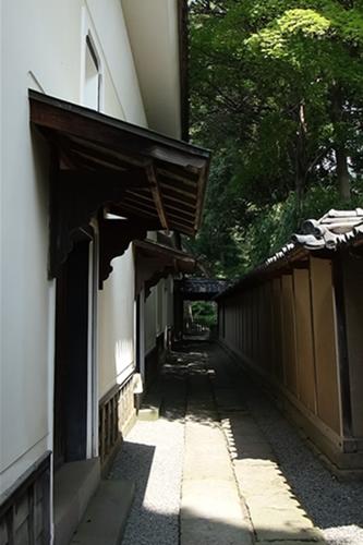 tanakahonke_gururi2