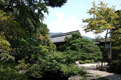 tanakahonke_niwa